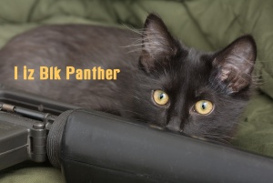 riflecatblkpanther8700.jpg