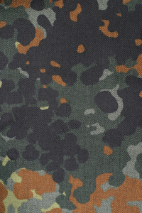 Flectar camouflage.