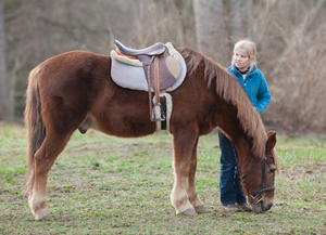 girl_and_pony_8344