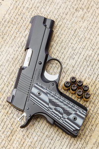 dan_wesson_eco_2167web