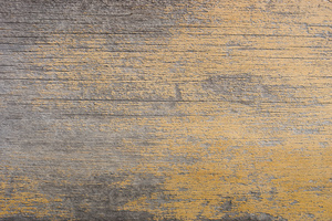 yellow_paint_DSC5646web