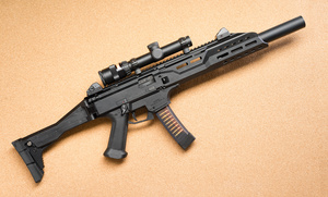 cz_scorpion_right_DSC1419web