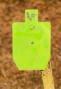 shootsteel_9yo_first_mag_18yards_DSC0656web
